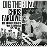 Dig the Buzz: Complete Recordings 1962-1965