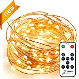 String Lights, Venhoo Dimmable Copper Wire LED Starry Lights Waterproof Outdoor Indoor Rope Decorative Lights for Party, Patio with Timer Function, Remote, UL Certified-33ft 100LEDs Warm White