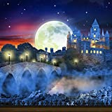 Photography Backdrop - Castle View with Large Moon - 10x10 Ft. - 100% Seamless Polyester