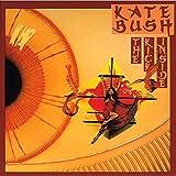 The Kick Inside [Vinyl] by Kate Bush