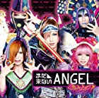 �ޤ���ʤ�ANGEL(A-Type)