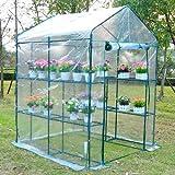 Outsunny 5' x 5' x 6' Portable Walk In Garden Steeple Greenhouse