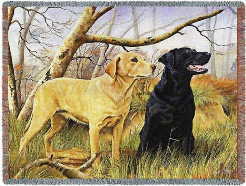 Pure Country 3297-T Yellow and Black Lab Pet Blanket, Various Blended Colorways, 53 by 70-Inch