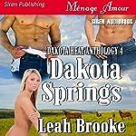 Dakota Springs: Dakota Heat, Book 4   Leah Brooke