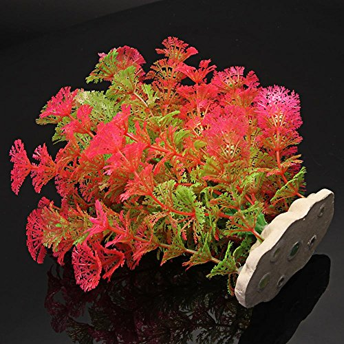 plante artificielle aquatique en plastique rose vert d coration aquarium. Black Bedroom Furniture Sets. Home Design Ideas
