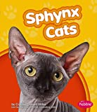 Sphynx Cats (Pebble Books)