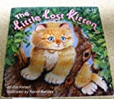 img - for The Little Lost Kitten book / textbook / text book