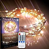 Qualizzi Starry Lights 20 Feet 120 LED Warm White Dimmable String Light. Lights Twinkle or Fade. Fairy or Flashing Effects. Remote Control Plus E-book. 110 220v Pw Adaptor