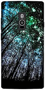 The Racoon Grip printed designer hard back mobile phone case cover for OnePlus 2. (Night Full)