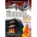 Buddha Wild: Monk in a Hut ~ n/a
