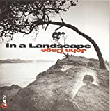 In a Landscape--Ambient Music of John Cage