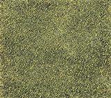 Nゲージ 24-314 ターフ 緑色ブレンド (T49)