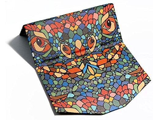 lagarto-animal-caja-de-vidrios-adecuado-para-la-mayoria-de-las-gafas-y-gafas-de-sol-por-embryform