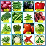 Only For Organic ! Combo Of Fifteen Winter Kitchen Garden Hybrid Seeds ! Launch Offer : Get 30 Yellow Capsicum Seeds Free!