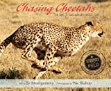 Chasing Cheetahs: The Race to Save Africas Fastest Cat (Scientists in the Field Series)