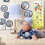 BEST Boy BABY MONTHLY STICKERS - Capture your babies milestones in photos - Make scrapbooking easy - Ideal for creating your babies memory books - Comes with FREE Bonus Growth Chart