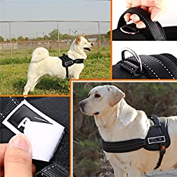 Soft Padded adjustable Harness Vest for Pet Dog Sport Working Trainning L (L-Chest 25.6-33.5 inch)