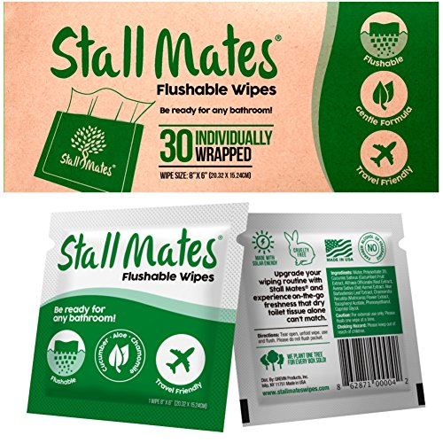 Stall Mates: Flushable, individually wrapped wipes for travel. (30 on-the-go singles) (Wet Wipes Travel Flushable compare prices)