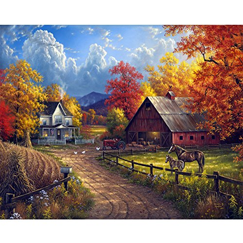 Blxecky 5D DIY Diamond Painting By Number Kits,Village farm(16X12inch/40X30CM) (Farm Paint By Number compare prices)