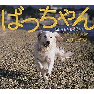 ばっちゃん―助けられた繁殖犬たち