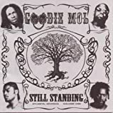 Still Standing Goodie Mob