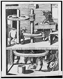 Photo: Ox-powered machine for grinding or milling grain,1617,Jacobus Strada,Mills