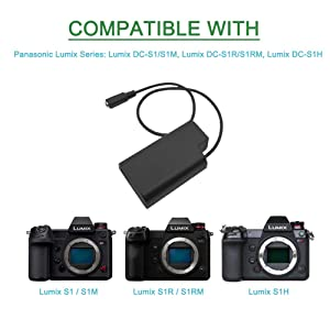 Gonine DMW-DCC16 DMW-AC8 AC Power Adapter DC Coupler Charger Kit Compatible with Panasonic BLJ31 Battery and LUMIX S1 S1R S1H Lumix S Series Cameras. (Color: DCC16)