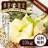 沖縄県産ピーチパイン 10kg ランキングお取り寄せ