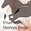 Titus Alone Audiobook by Mervyn Peake Narrated by Saul Reichlin