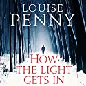 How the Light Gets In: Chief Inspector Gamache, Book 9 (       UNABRIDGED) by Louise Penny Narrated by Adam Sims