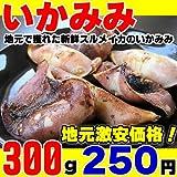 スルメイカのいかミミが300g!地元だからできるこの価格!<バーべキュー(BBQ)にぴったり!>新鮮な烏賊ミミ300g入真空P ランキングお取り寄せ