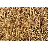 100 Percent Natural Wheat Straw (8 lbs.)