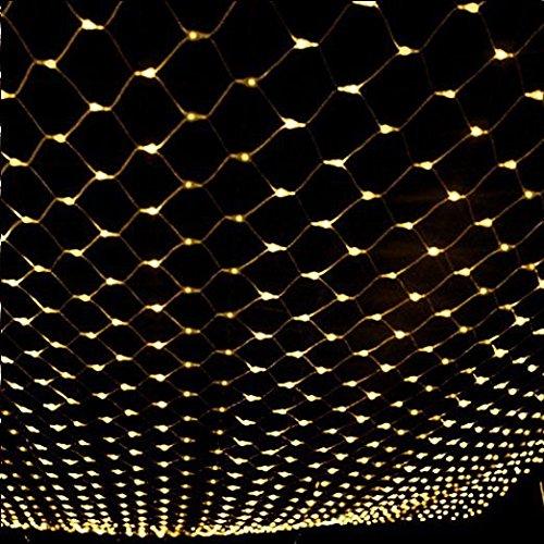 Rete di Luci a LED con cavo trasparente Dimensione: 2mX3m con 204LEDs Decorazione Luminoso per la Festa Con 8 Modi di Luce Controllato da Tail Plug Collegabile Colore: Bianco Caldo