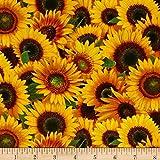 Sunflowers Packed Sunflowers Yellow Fabric