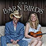 Barn Birds