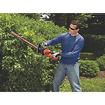 BLACK+DECKER LHT2436 40V Cordless Hedge Trimmer, 24
