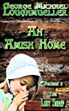 An Amish Home - Volume 3 - The Lost Sheep