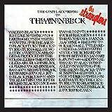 (The Gospel According To) The Meninblack