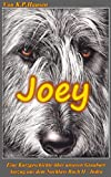 img - for Joey (Der Nachlass 6) (German Edition) book / textbook / text book