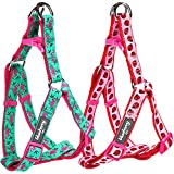 Blueberry Pet 1-Inch Harnesses No Pull Dog Harness Adjustable, Large, Pink Flamingo on Light Emerald
