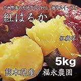 紅はるか 5Kg 【福永農園/熊本県産】