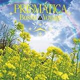 Bossa Voyage [12 inch Analog]