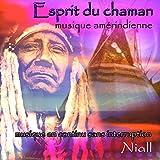 Esprit du chaman: musique amérindienne: musique en continu sans interruption