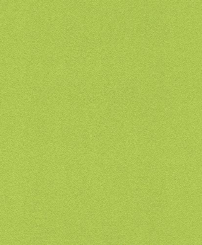 vlietstapete-rasch-prego-489538-uni-grun