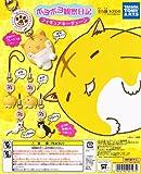 ポヨポヨ観察日記 フィギュアキーチェーン ネコ 猫 ガチャ タカラトミーアーツ(全5種フルコンプセット)