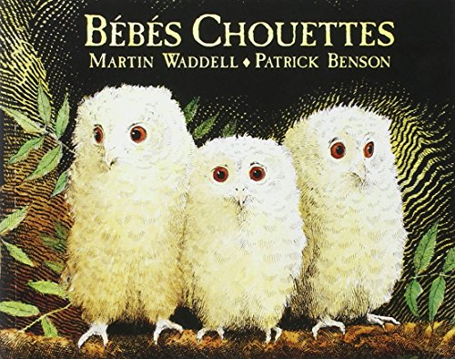 bebes-chouettes