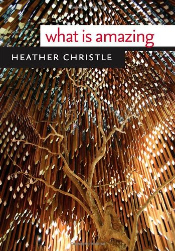 What Is Amazing (Wesleyan Poetry Series)