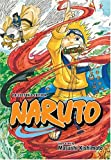 Naruto, Vol. 1 (Collector's Edition) (v. 1)