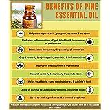 Ambrosial PIne Essential Oil 100% Natural Organic Uncut Undiluted (1000ML)
