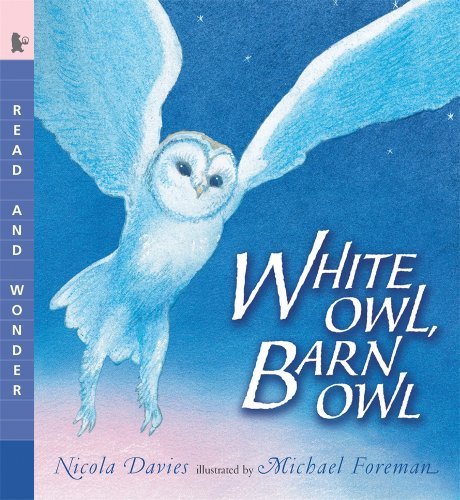 White Owl, Barn Owl: Read and Wonder PDF
